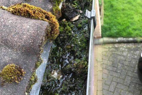 franklin exterior care gutter cleaning